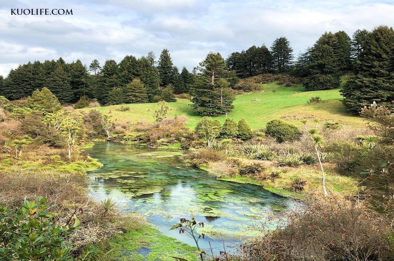 紐西蘭_blue-spring